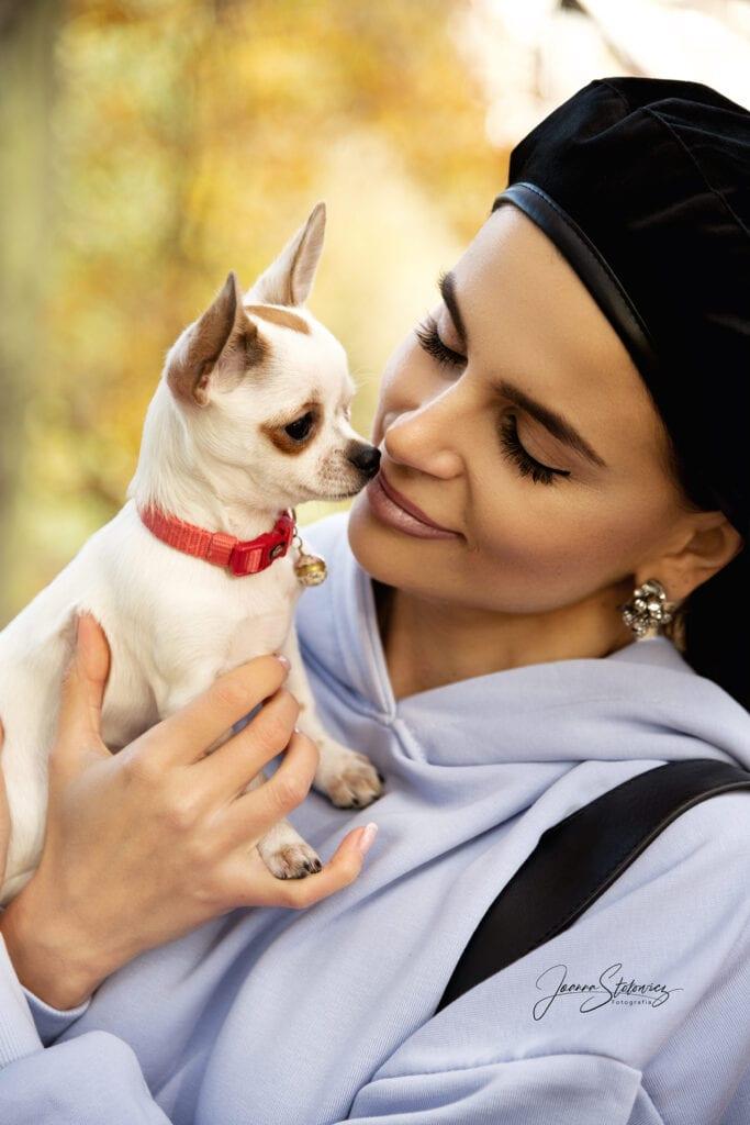 sesja zdjęciowa z psem