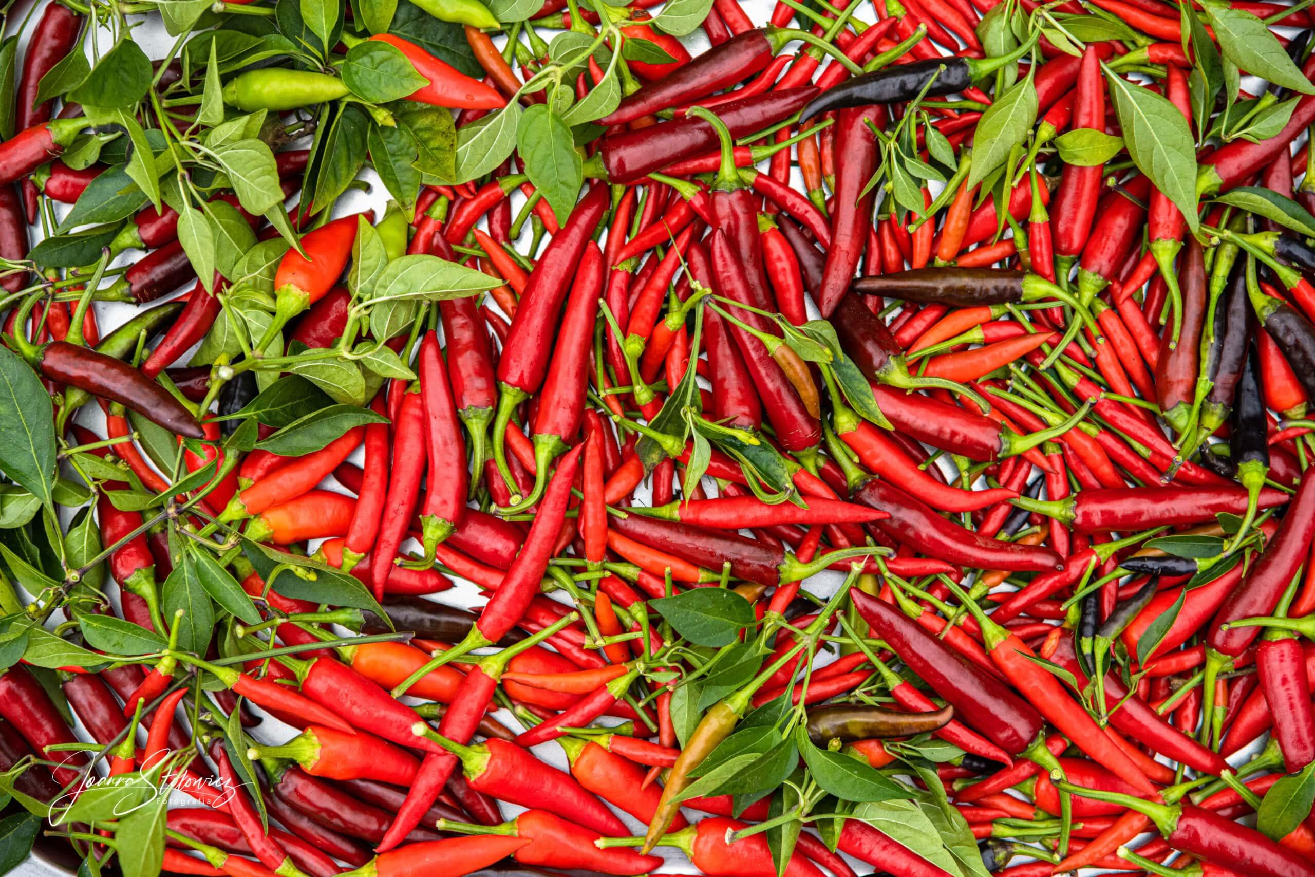 papryka chilli